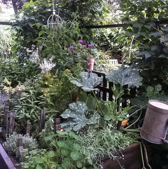 Hochbeet Bepflanzen So Wächst Das Gemüse von Hochbeet Bepflanzen Erstes Jahr Photo
