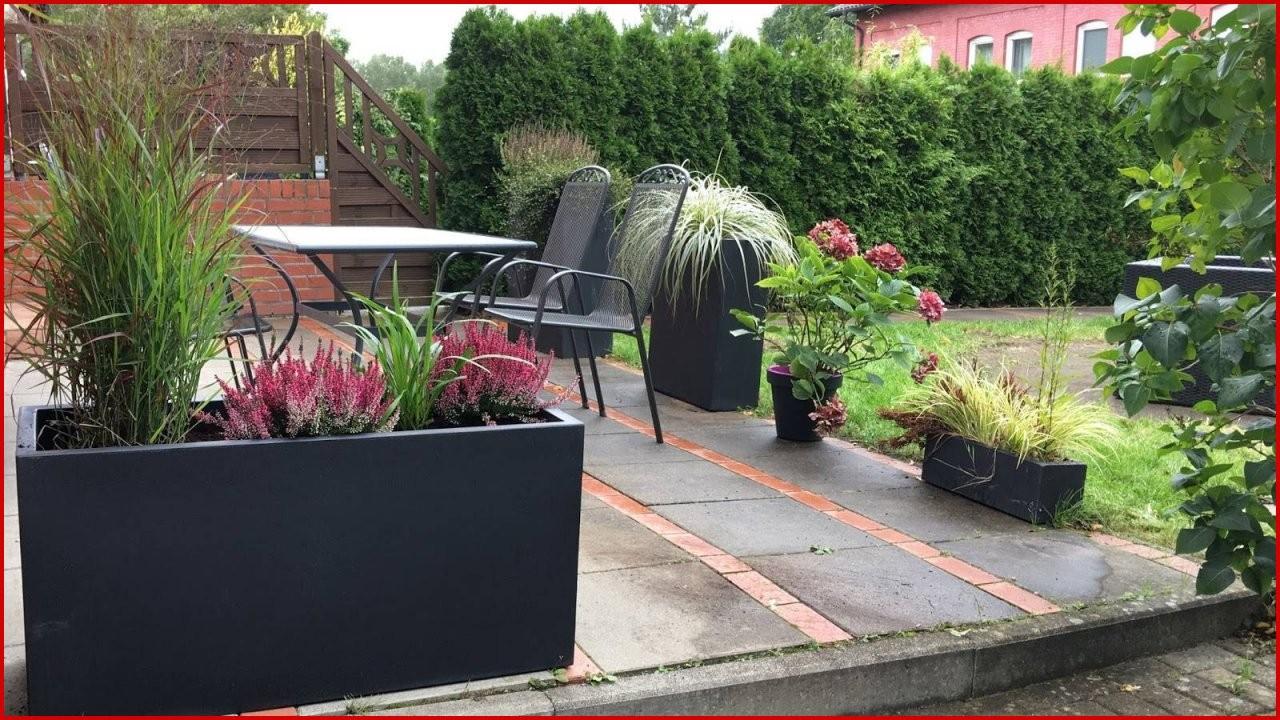 Hohe Pflanzen Als Sichtschutz 45 Schöpfung  Vetosb202 von Pflanzen Als Sichtschutz Terrasse Photo