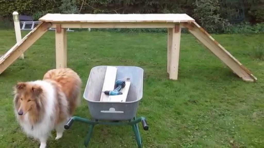 Hunde Agility Geräte Für Große Hunde Selber Machen Und Bauen von Hunde Wippe Selber Bauen Bild