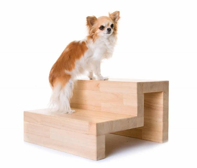 Hundetreppe  Die Hilfe Im Hundealltag  Orthopädisches Hundebett von Hundetreppe 60 Cm Hoch Bild