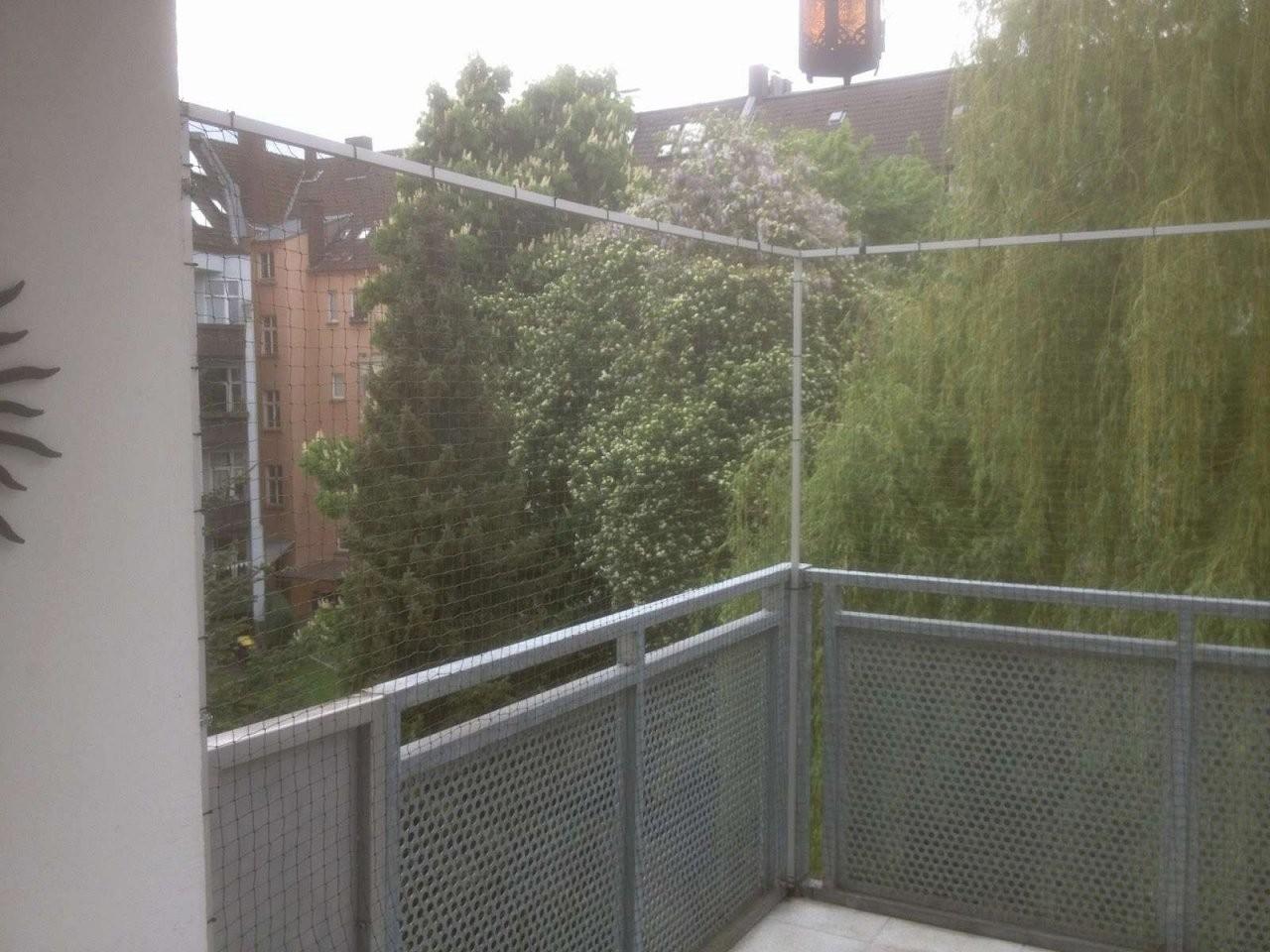 Ideen 41 Zum Katzennetz Balkon Befestigen von Katzenschutznetz Balkon Ohne Bohren Bild