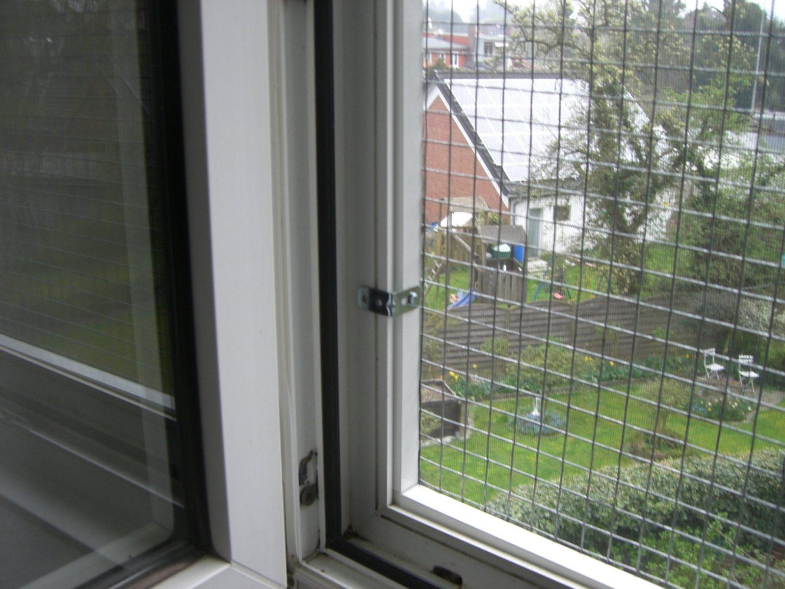 Katzennetz Fenstersicherung  Der Onlineshop Für Katzennetzprofis von Katzenschutznetz Balkon Ohne Bohren Photo
