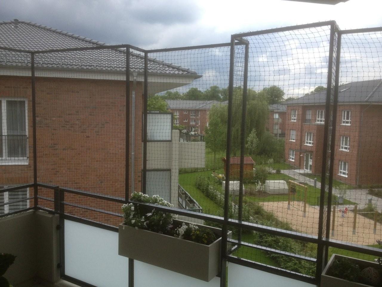 Katzennetz Nrw Die Adresse Für Ein Katzennetz Katzennetz Ohne von Katzenschutznetz Balkon Ohne Bohren Bild