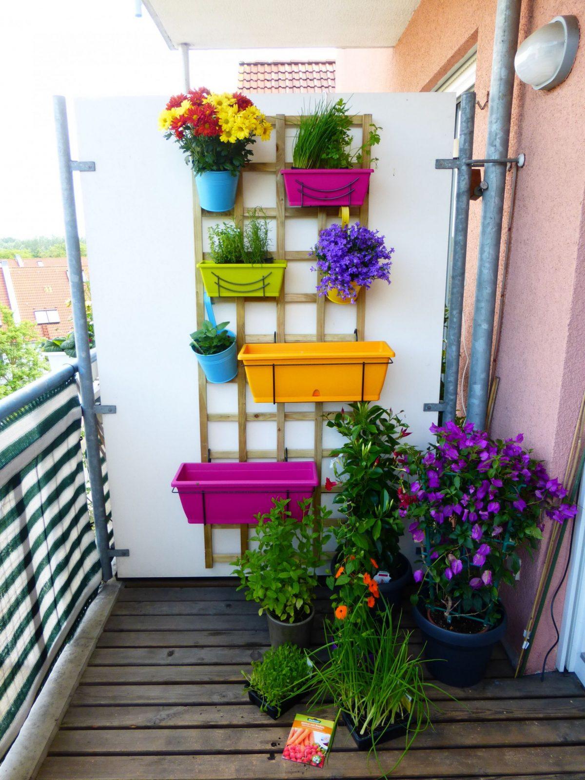 Kleiner Balkon Mit Verschiedenen Pflanzen Und Kräutern In Einem von Balkon Ideen Kleiner Balkon Photo