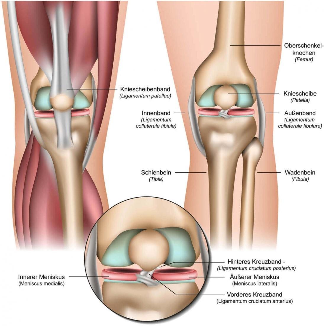 Knieschmerzen ▷ Ursache Behandlung Und Übungen  Liebscher  Bracht von Knieschmerzen Beim Treppe Runter Bild