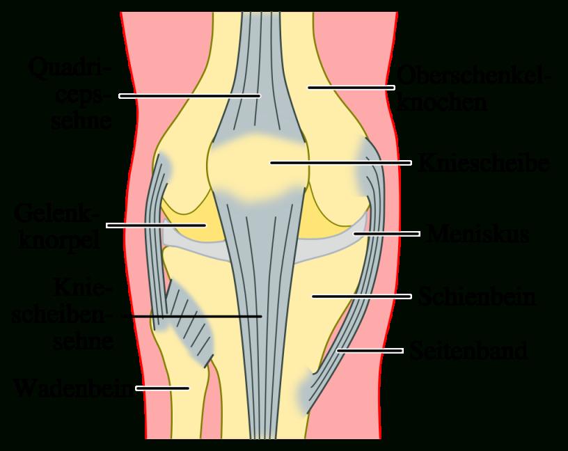 Knieschmerzen  Ursachen Und Behandlung von Knieschmerzen Beim Treppe Runter Gehen Photo