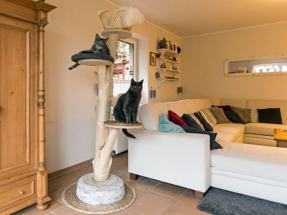 Kratzbaum Für Die Katze Selber Bauen Anleitung von Rustikale Möbel Selber Bauen Bild