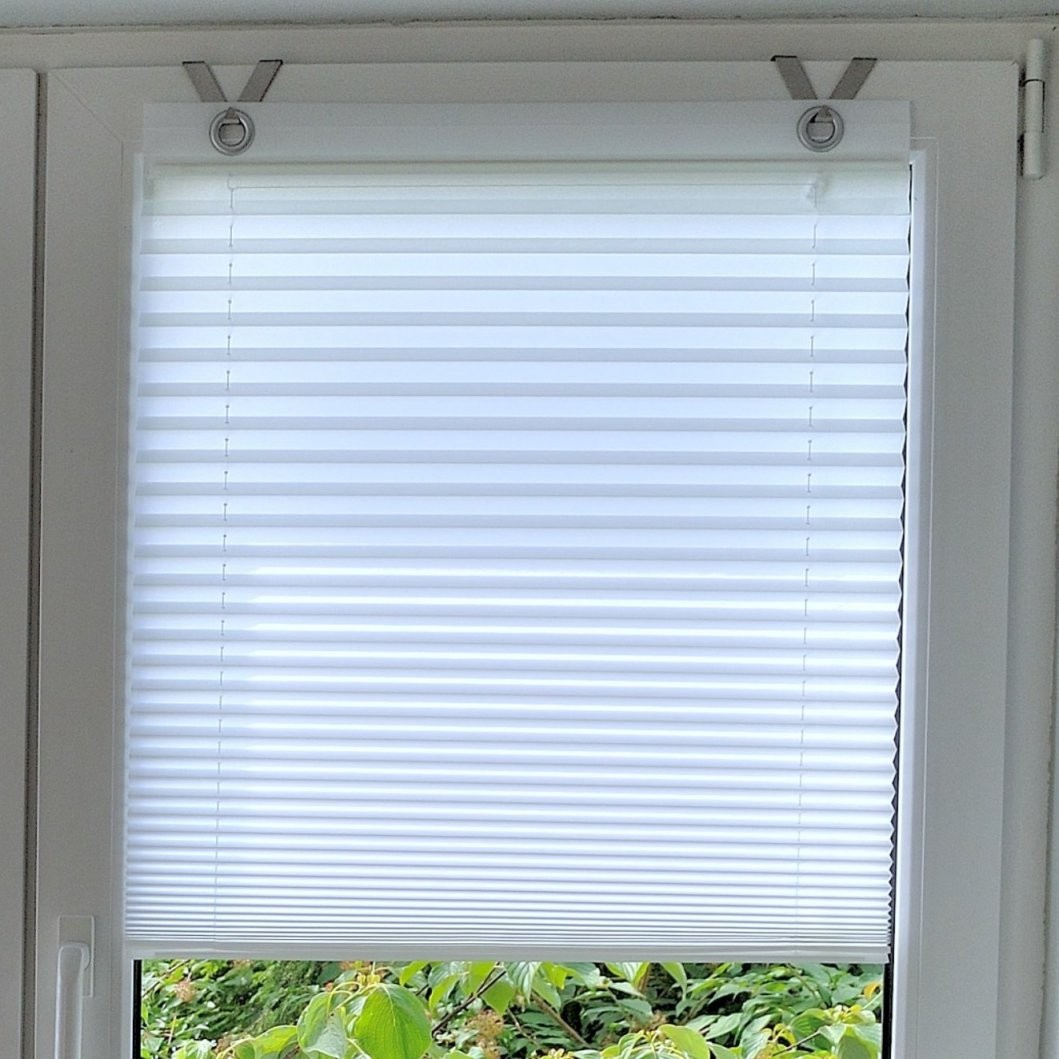 Kutti Plissees  Wayfair von Rollo Mit Ösen Und Fensterhaken Bild