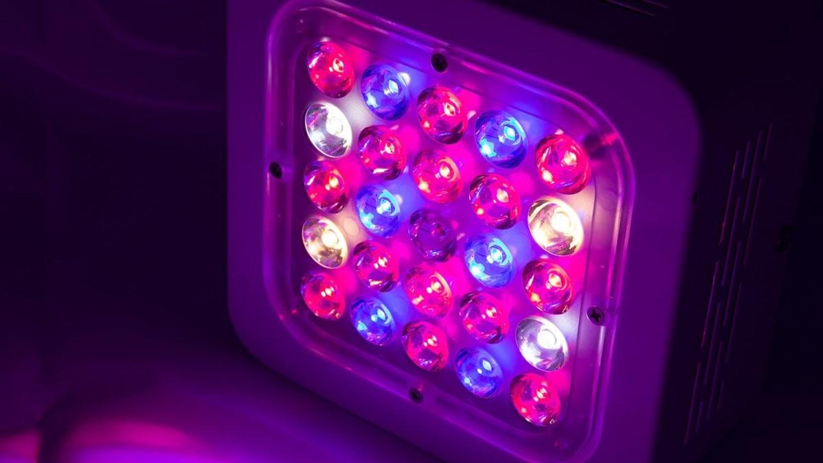 Ledgrowpanel Für Effiziente Pflanzenbeleuchtung Kaufen  Ab Xx € von Led Grow Lampe Selber Bauen Photo