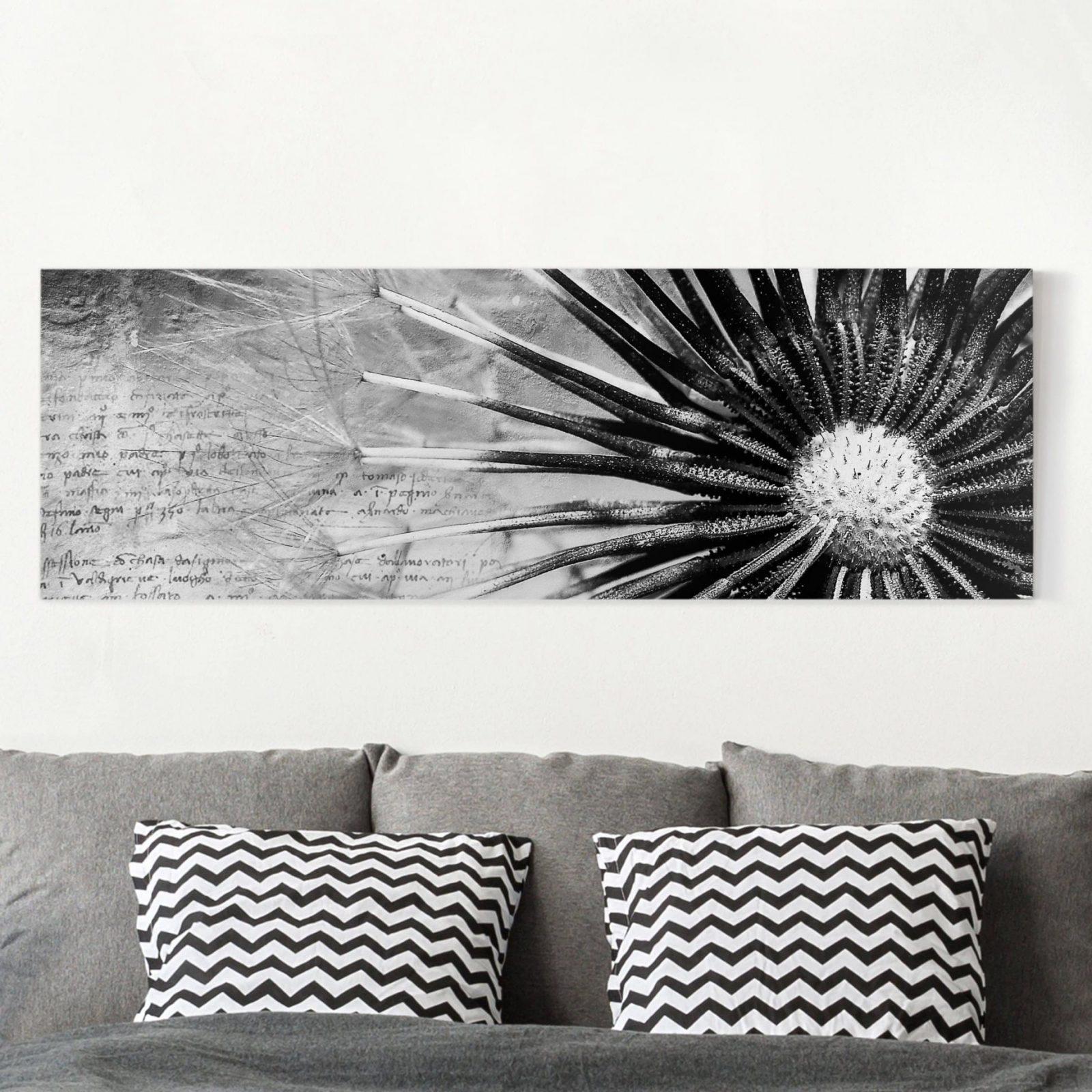Leinwandbild Schwarzweiß  Pusteblume Schwarz  Weiß  Panoramabild von Leinwandbilder Schwarz Weiß Xxl Bild