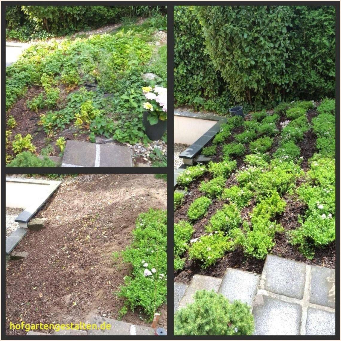 Mein Garten Einzigartig 33 Schön Wie Gestalte Ich Mein Garten von Wie Gestalte Ich Meine Terrasse Photo