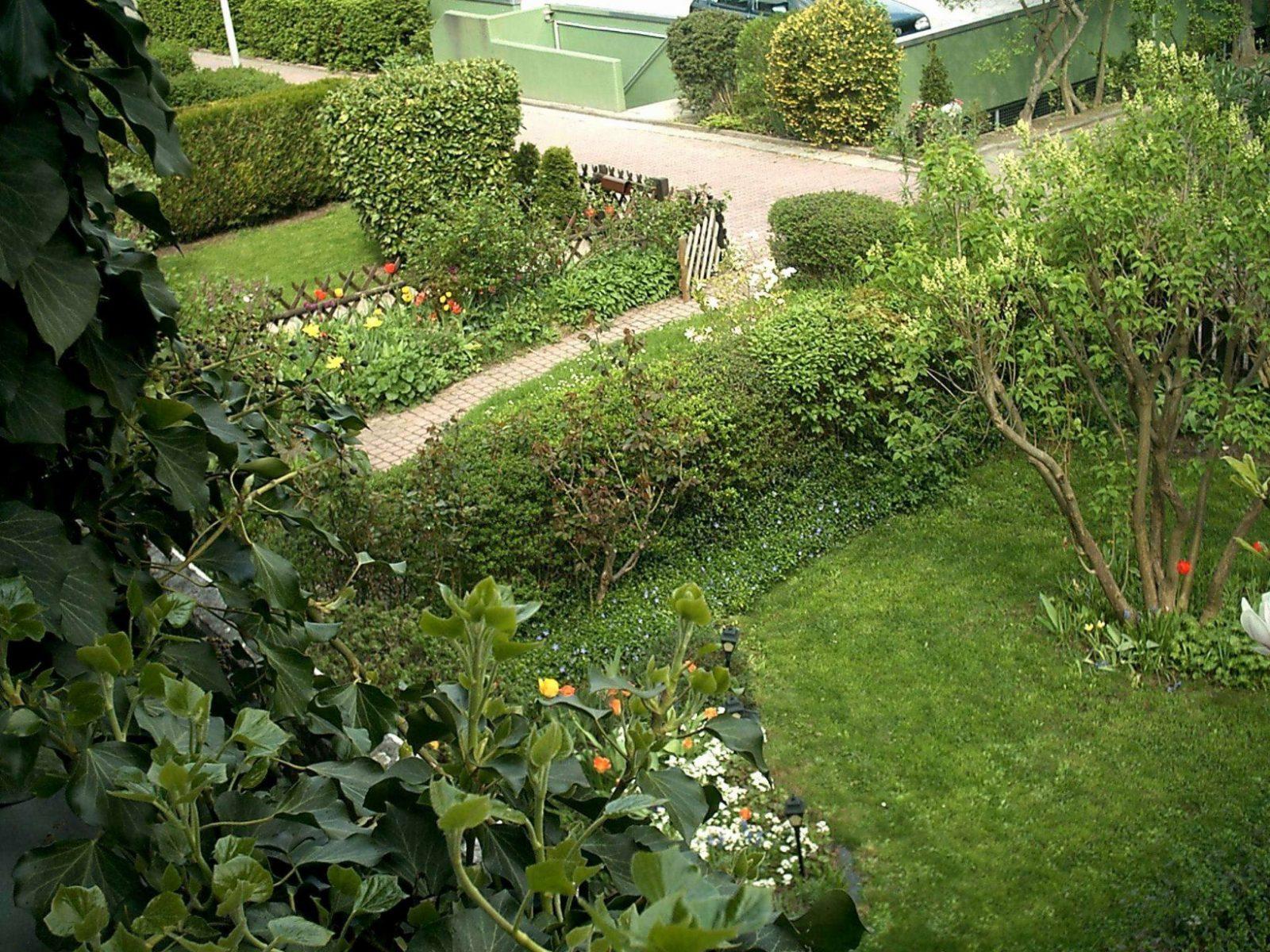 Mein Schöner Garten Lidl Einzigartig Garten Schöner Wohnen Schön von Mein Schöner Garten Lidl Photo