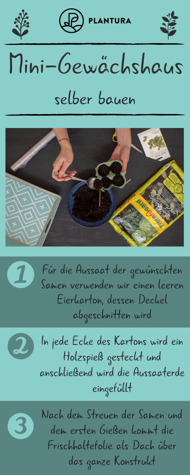 Minigewächshaus Videoanleitung Zum Selbermachen  Garten Tipps von Mini Gewächshaus Selber Bauen Frischhaltefolie Photo