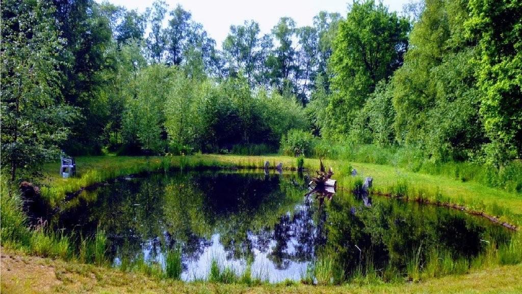 Naturteich Anlegen Ohne Folie  300M² Günstig+Schön   Naturgartenteichtipps Fürs Selber Bauen von Gartenteiche Aus Kunststoff Gebraucht Photo