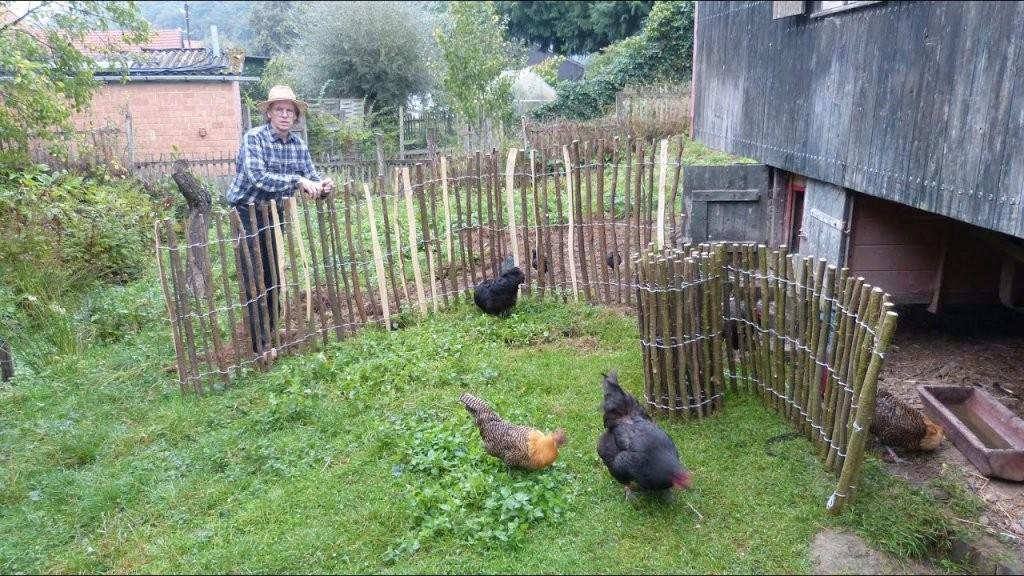 Naturzaun Für 1 € Der Meter Gartenzaun Staketenzaun Selber Bauen von Staketenzaun Tor Selber Bauen Bild
