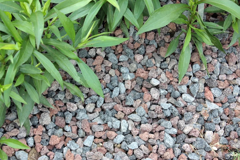 Ob Bodendeckerpflanzen Rindenmulch Oder Kiesbeet Anlegen  Native von Günstige Alternative Zu Rindenmulch Bild