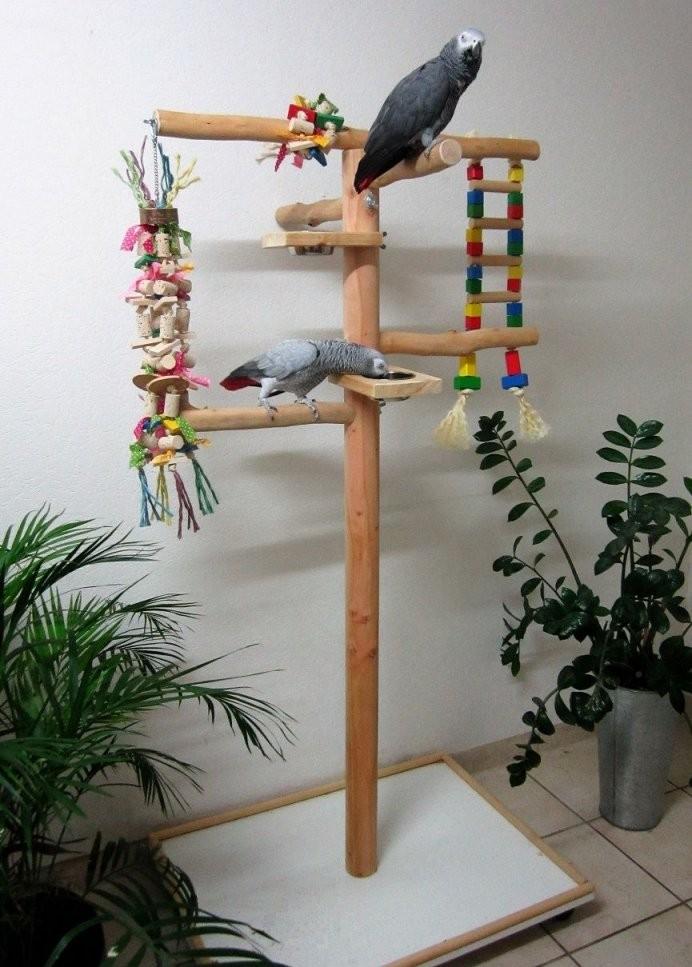 Papageienfreisitz Selber Bauen  Schritt Für Schritt Anleitung Mit von Wellensittich Spielzeug Selber Machen Bild