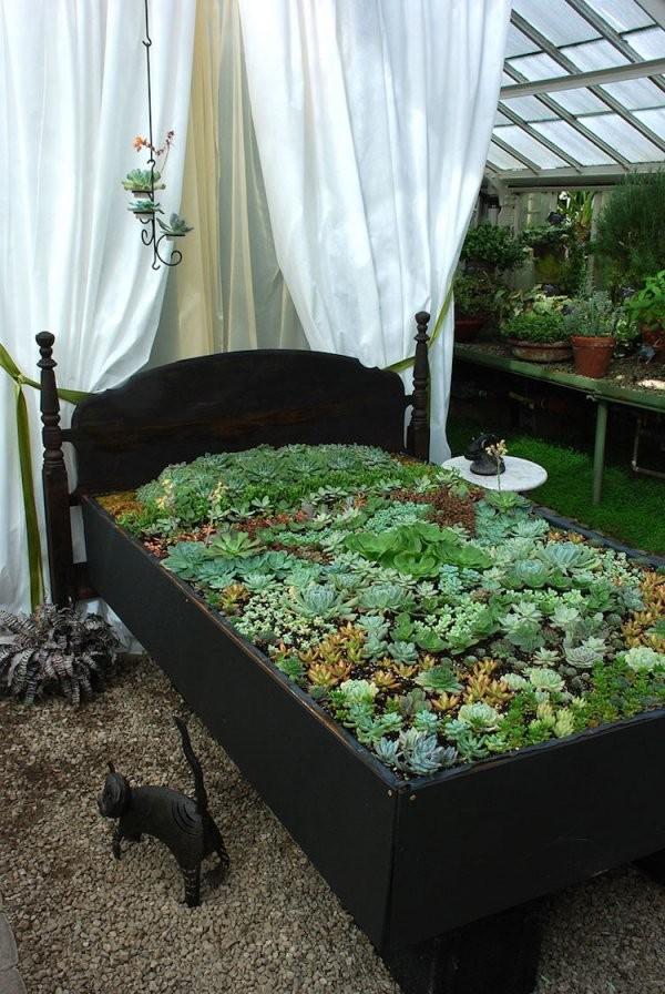 Pflanzgefäße Im Außenbereich  22 Ideen Für Hauswurzen Gartendeko von Deko Ideen Mit Hauswurz Photo