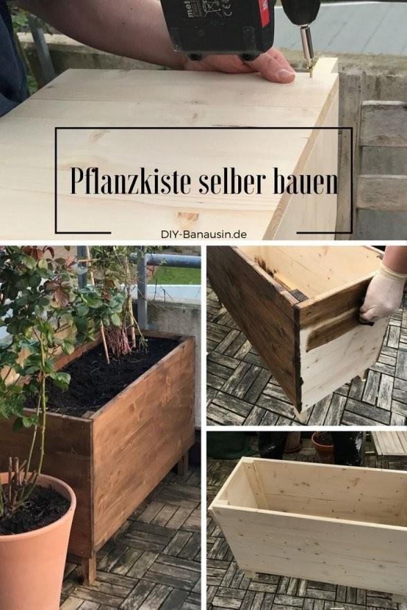 Pflanzkiste  Hochbeet Für Den Balkon Selber Bauen Wir Haben Eine von Blumenkübel Selber Bauen Anleitung Bild