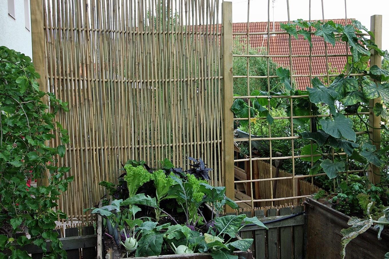 Rankgitter Und Sichtschutzelemente Mit Bambusstäben Selber Bauen von Rosenbogen Aus Holz Selber Bauen Bild