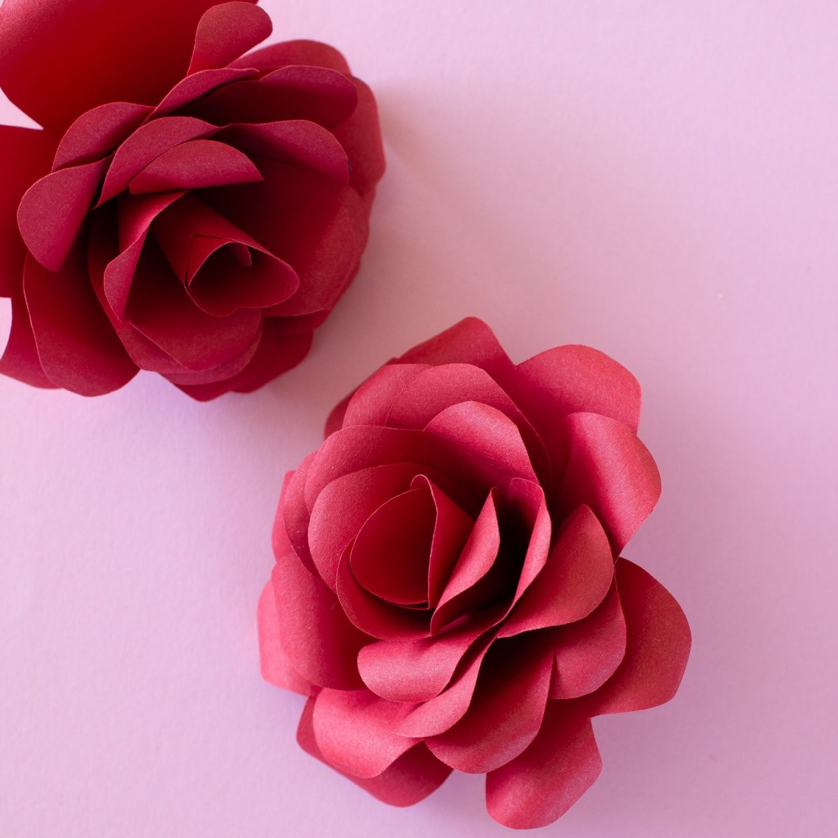 Rosen Basteln Als Nachhaltige Geschenkidee  Papershape von Rose Basteln Papier Anleitung Bild