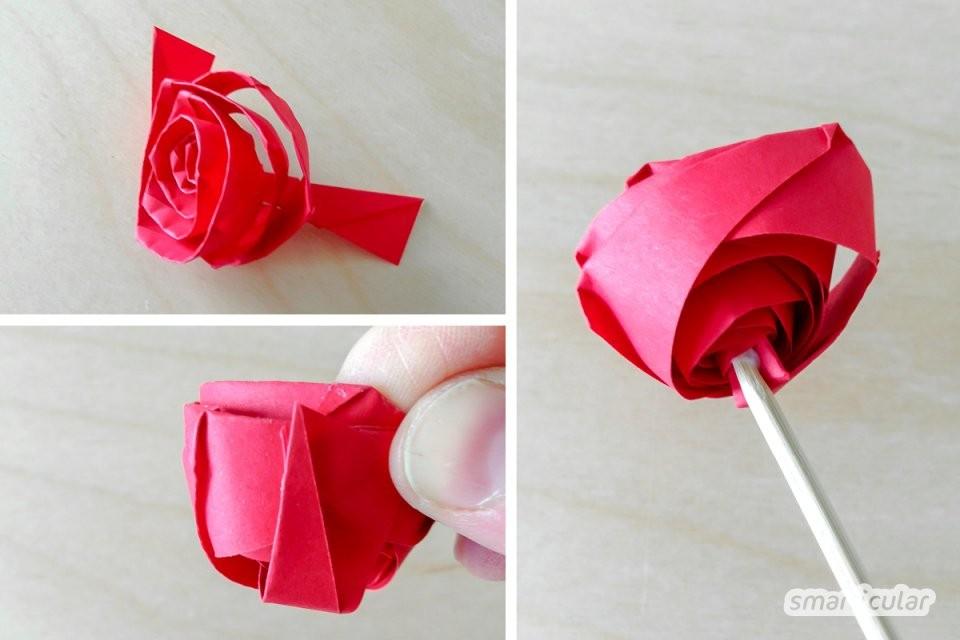 Rosen Einfach Aus Papier Falten  Nachhaltig Und Langlebig von Rose Basteln Papier Anleitung Bild
