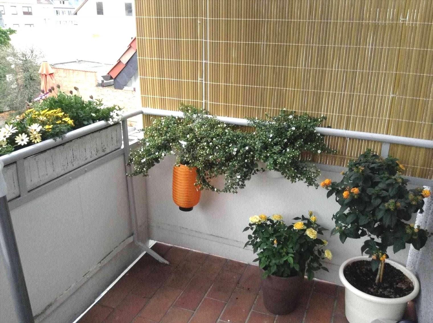 Sichtschutz Balkon Seitlich Ohne Bohren 45 Skizze  Vetosb202 von Sichtschutz Für Balkon Ohne Bohren Photo