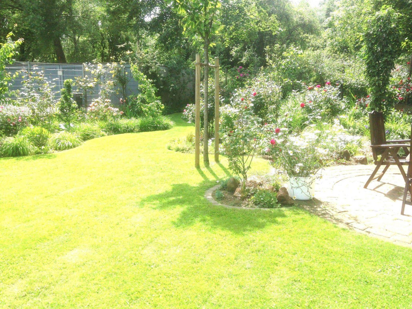 Steingarten Anlegen Reizend Garten Mit Steinen Anlegen Luxuriös von Garten Mit Kies Bilder Photo
