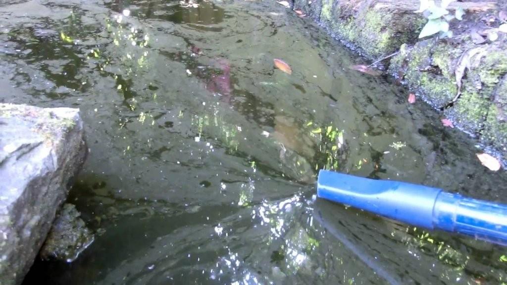 Teichsauger Test 2019  Die Besten Teichsauger Im Vergleich von Gartenteiche Aus Kunststoff Gebraucht Bild