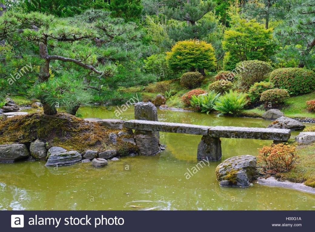 Typischer Japanischer Garten Mit Steindekorationen Und Koiteich von Japanische Deko Für Garten Photo