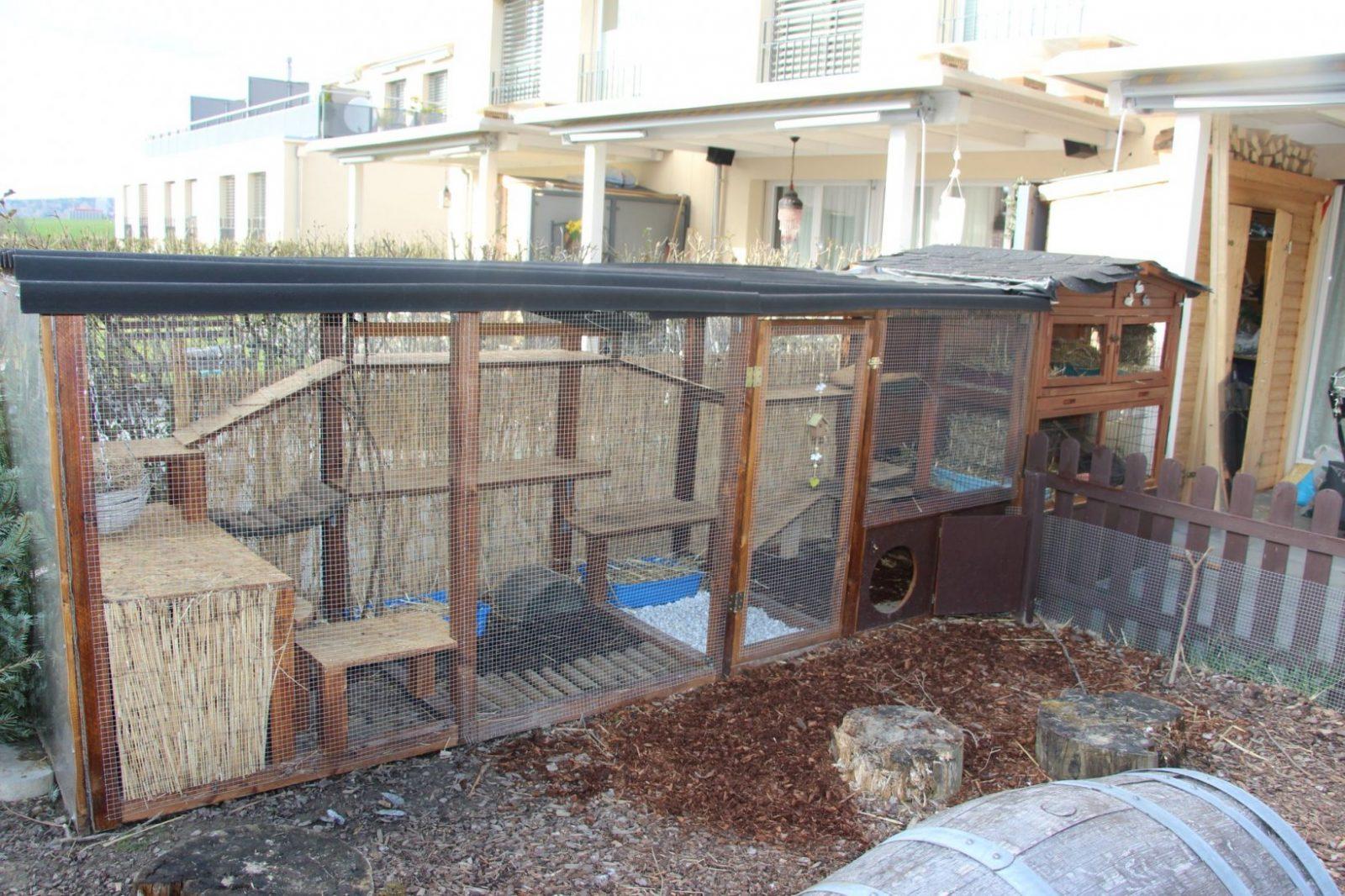 Unser Schützender Stall Für Die Nacht❤ ❤  Kaninchen Stall von Kaninchen Spielplatz Selber Bauen Photo