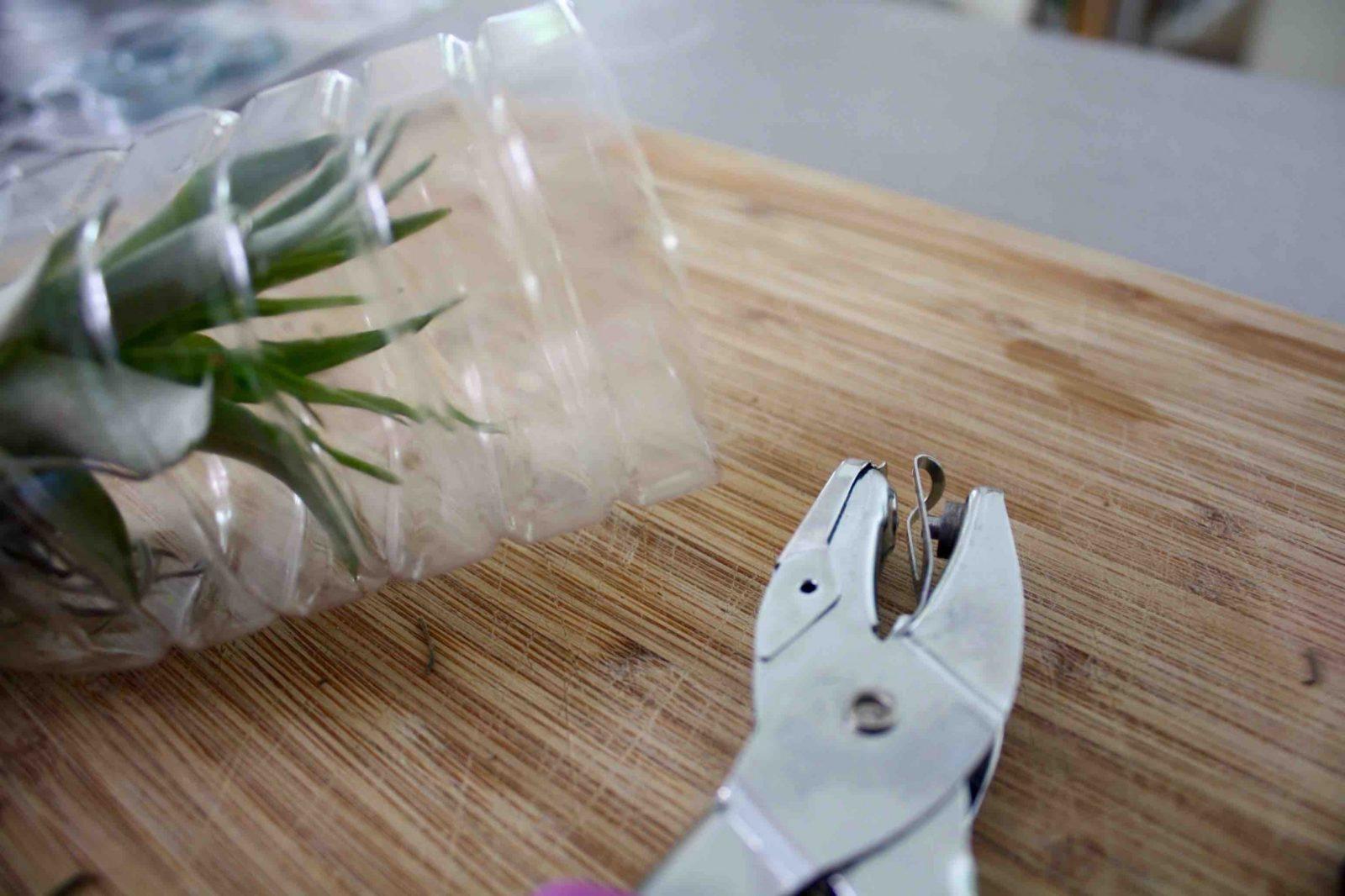 Upcycling Ideen Plastikflaschen Hängevase Tillandsie Hängegarten von Upcycling Ideen Zum Selbermachen Bild