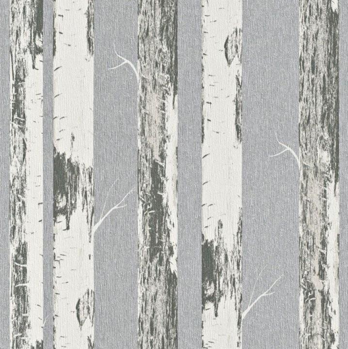 Vlies Tapete Rasch Amélie 574548 Birken Bäume Baum Weiß Schwarz von Tapete Birke Schwarz Weiß Photo