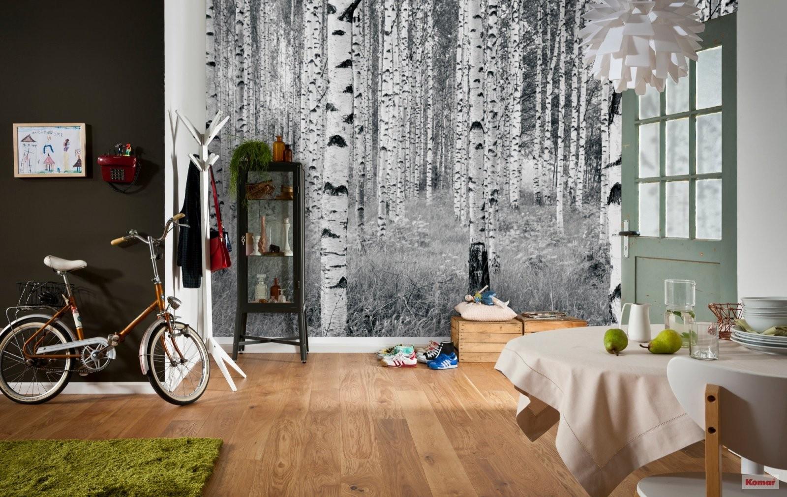 """Vliestapete """"Woods"""" (Xxl4023) Von Komar von Tapete Birke Schwarz Weiß Photo"""