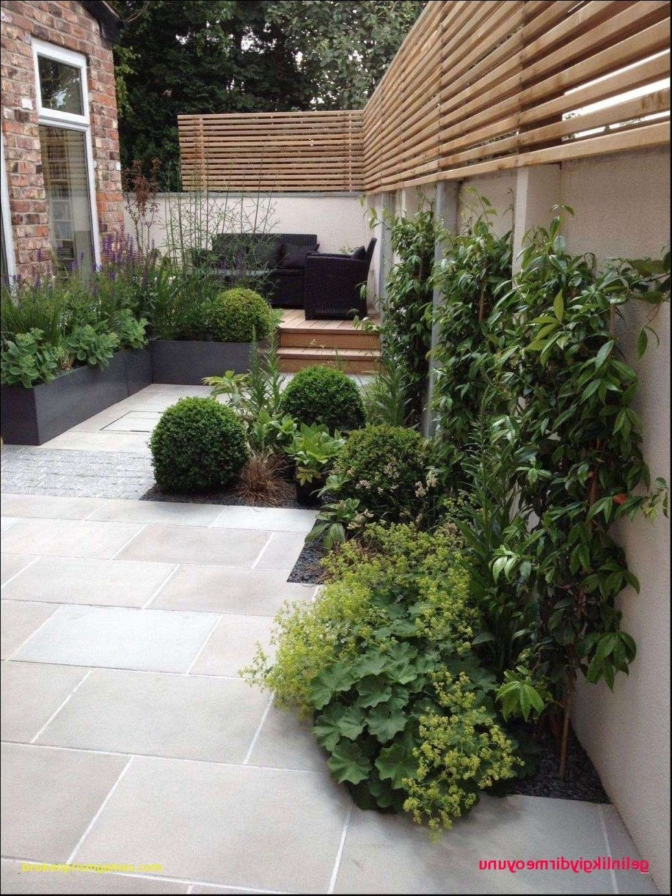 Vorgarten Gestalten Mit Kies Schema Von Gartengestaltung Kies von Vorgarten Gestalten Mit Kies Bild