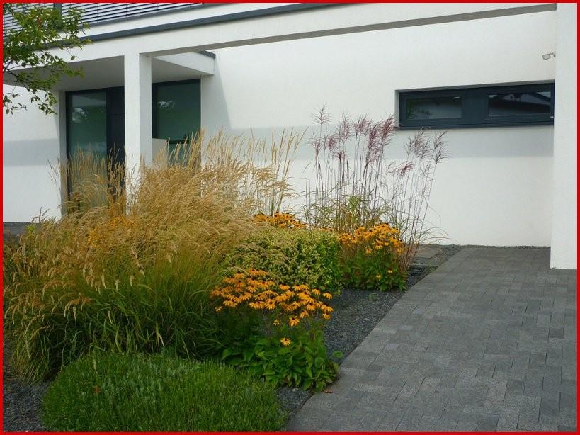 Vorgarten Mit Gräsern Gestalten – Wohn Design Planen Von Vorgarten von Vorgarten Gestalten Mit Kies Und Gräsern Photo