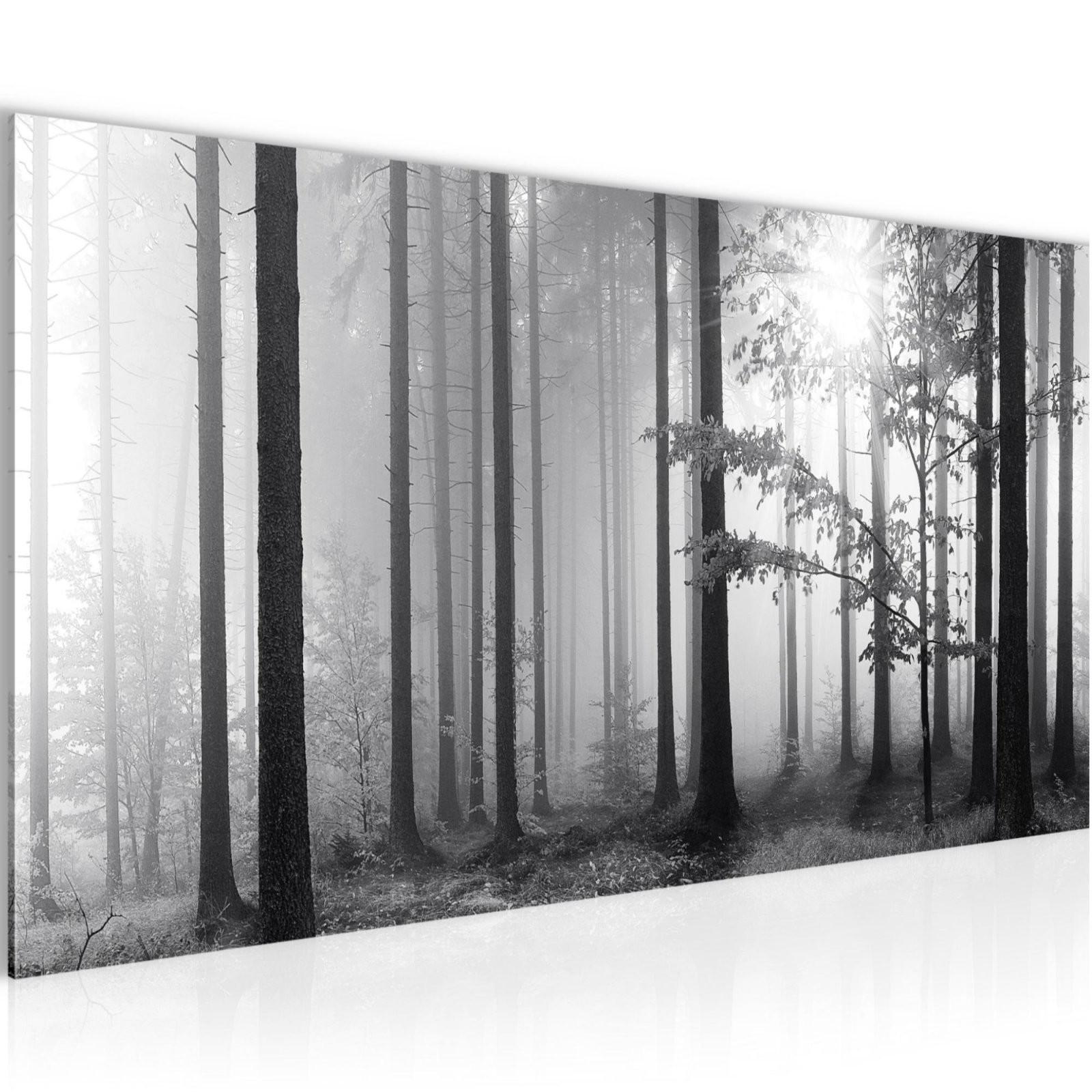 Wandbilder Wald Schwarz Weiß Vlies Leinwand Bild  Xxl Bilder von Leinwandbilder Schwarz Weiß Xxl Bild