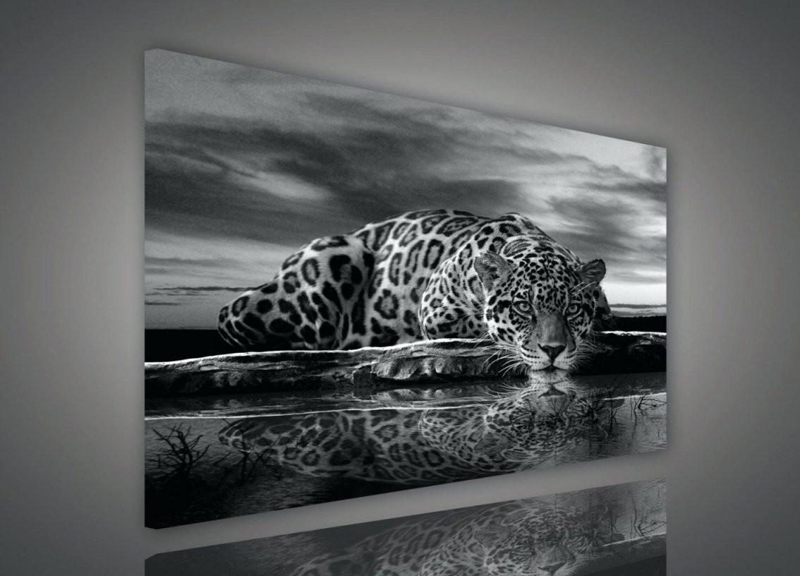 Xxl Leinwandbilder Schwarz Weis Wohnzimmer Wandbild Weia Schon Von von Leinwandbilder Schwarz Weiß Xxl Bild