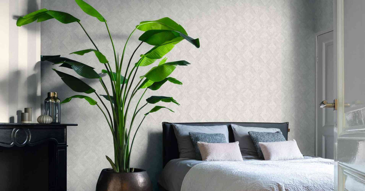 10 Große Zimmerpflanzen Die Garantiert Eindruck Schinden von Schöne Große Wohnzimmer Bilder Bild