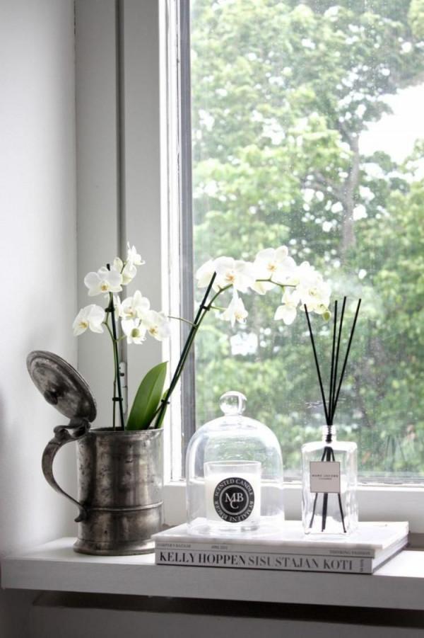 Auf Der Fensterbank Gedeihen Orchideen Sehr Gut von Deko Ideen Fensterbank Wohnzimmer Photo