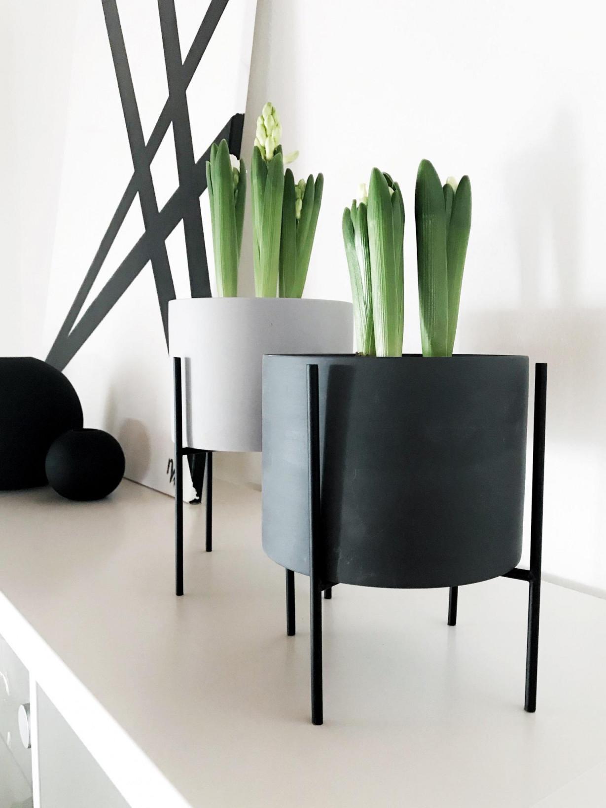 Blumentopf Inspiration Rund Um Blumentöpfe Bei Couch von Blumentopf Ideen Wohnzimmer Bild
