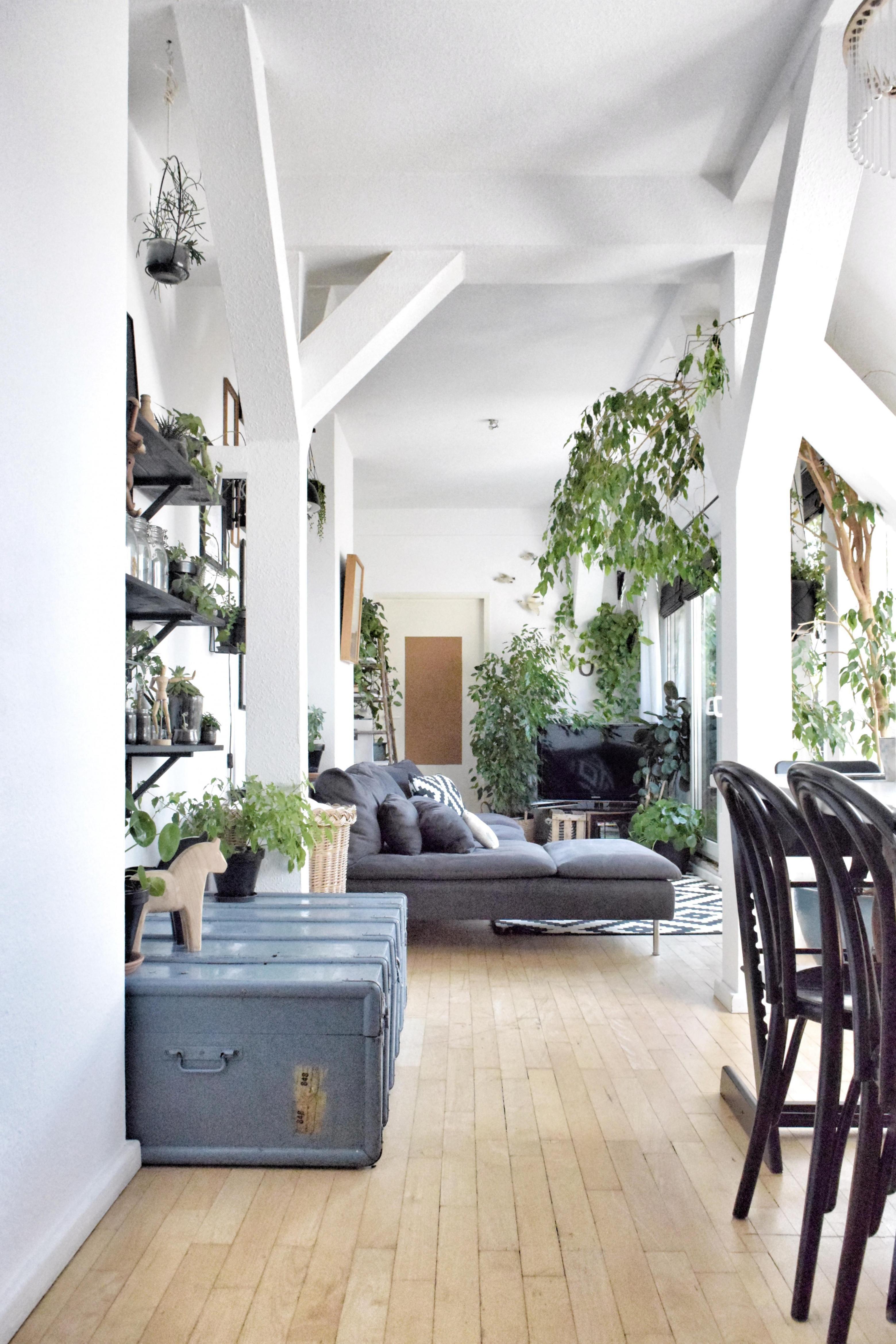Dachgeschoss • Bilder  Ideen • Couch von Dachgeschoss Wohnzimmer Einrichten Photo