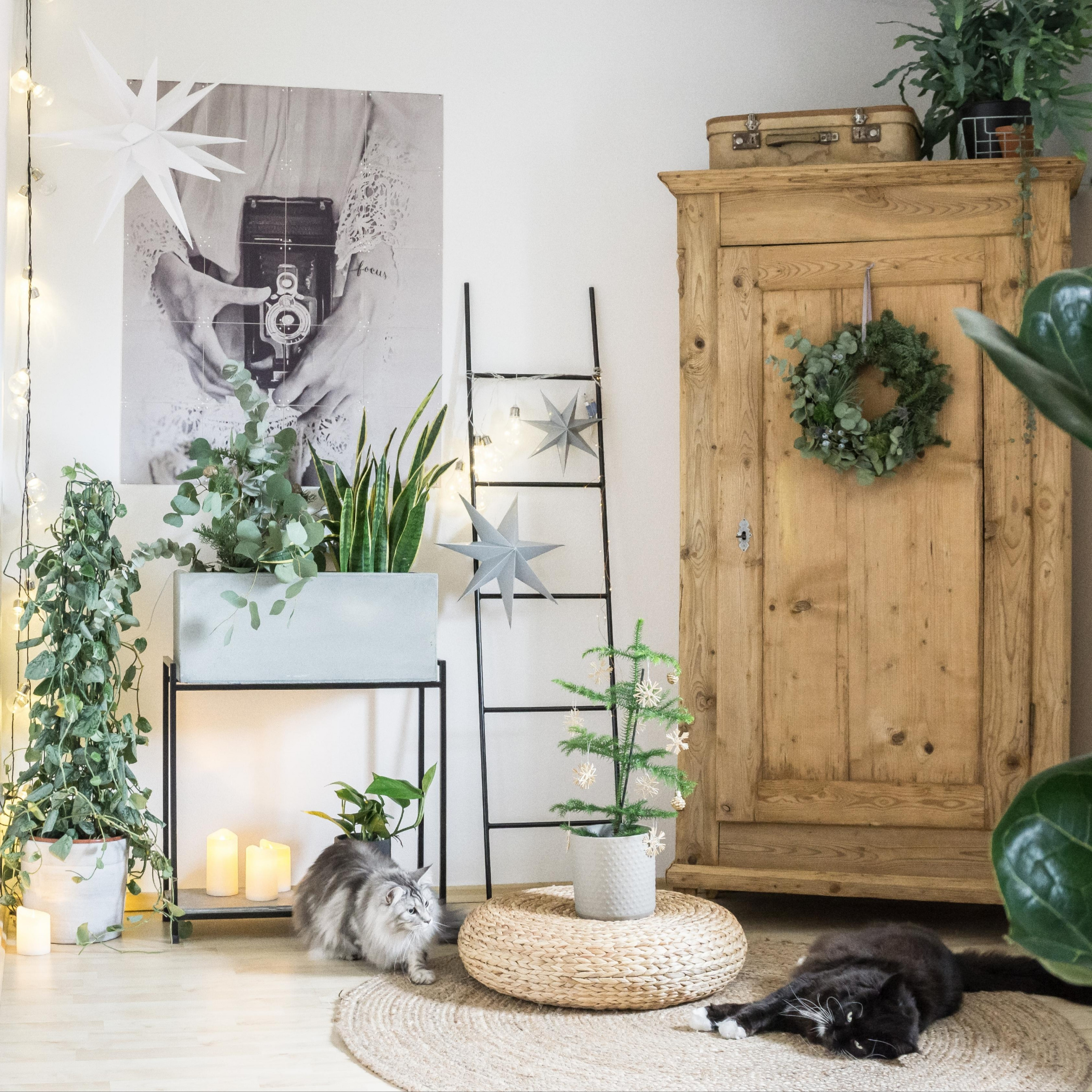 Deko Ideen Fur Das Wohnzimmer – Caseconrad von Deko Ecke Wohnzimmer Photo