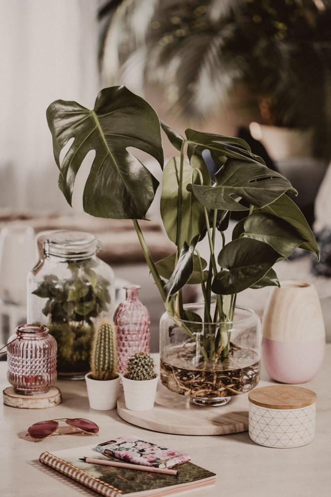 Deko Ideen Für Den Frühling  Deko Tipps Fürs Wohnzimmer von Deko Frühling Wohnzimmer Bild