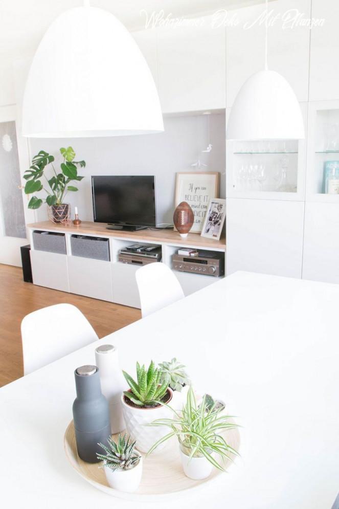 Die Ultimative Offenbarung Von Wohnzimmer Deko Mit Pflanzen von Deko Pflanzen Wohnzimmer Bild
