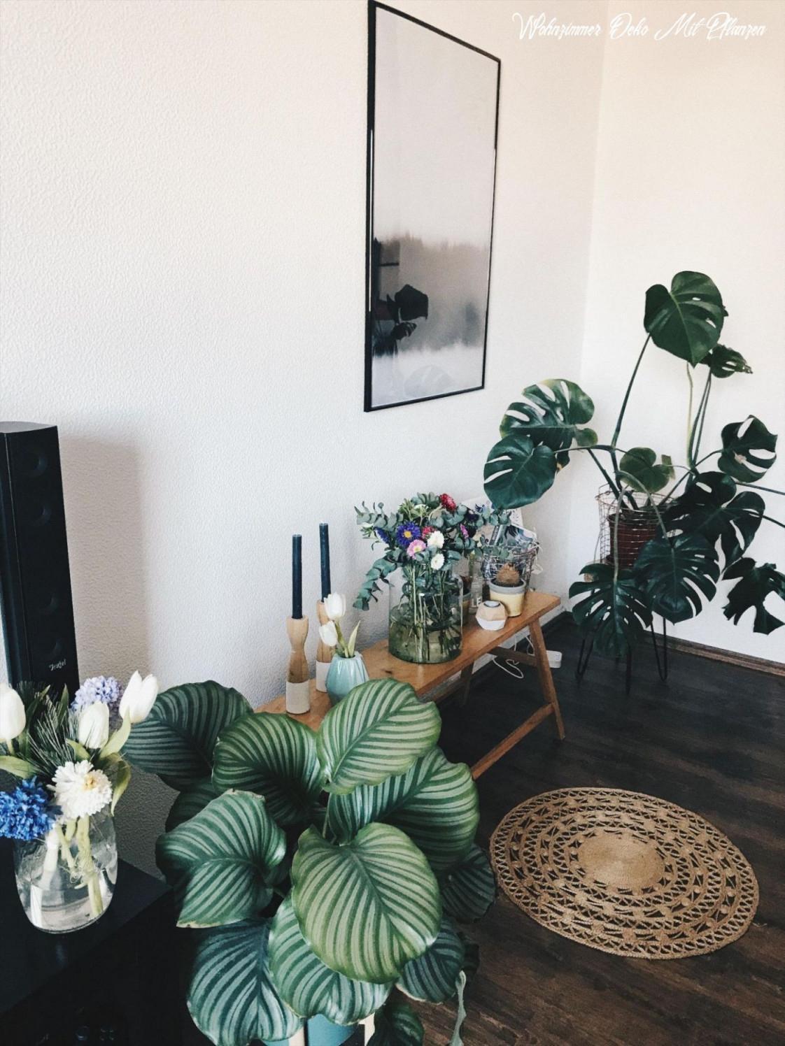 Die Ultimative Offenbarung Von Wohnzimmer Deko Mit Pflanzen von Pflanzen Deko Wohnzimmer Bild