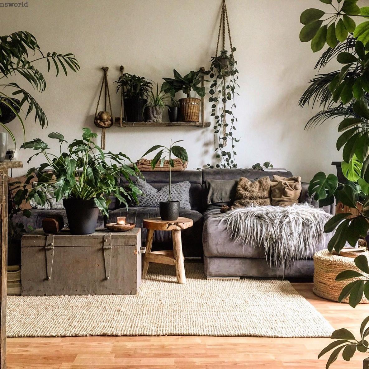 Dunsworld  Wohnzimmer Pflanzen Grüne Wohnzimmer von Wohnzimmer Mit Pflanzen Gestalten Photo