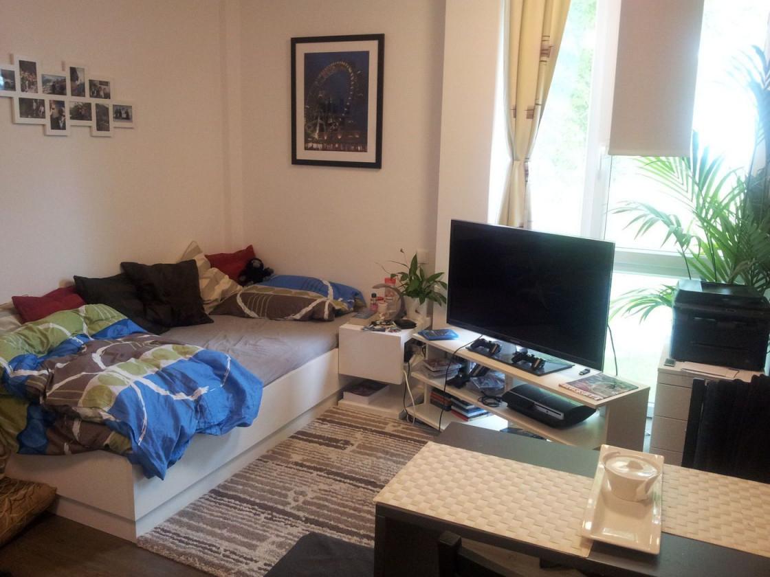 Kombinierter Wohn Schlafraum Ideen  Bilder von Schlafecke Im Wohnzimmer Einrichten Photo