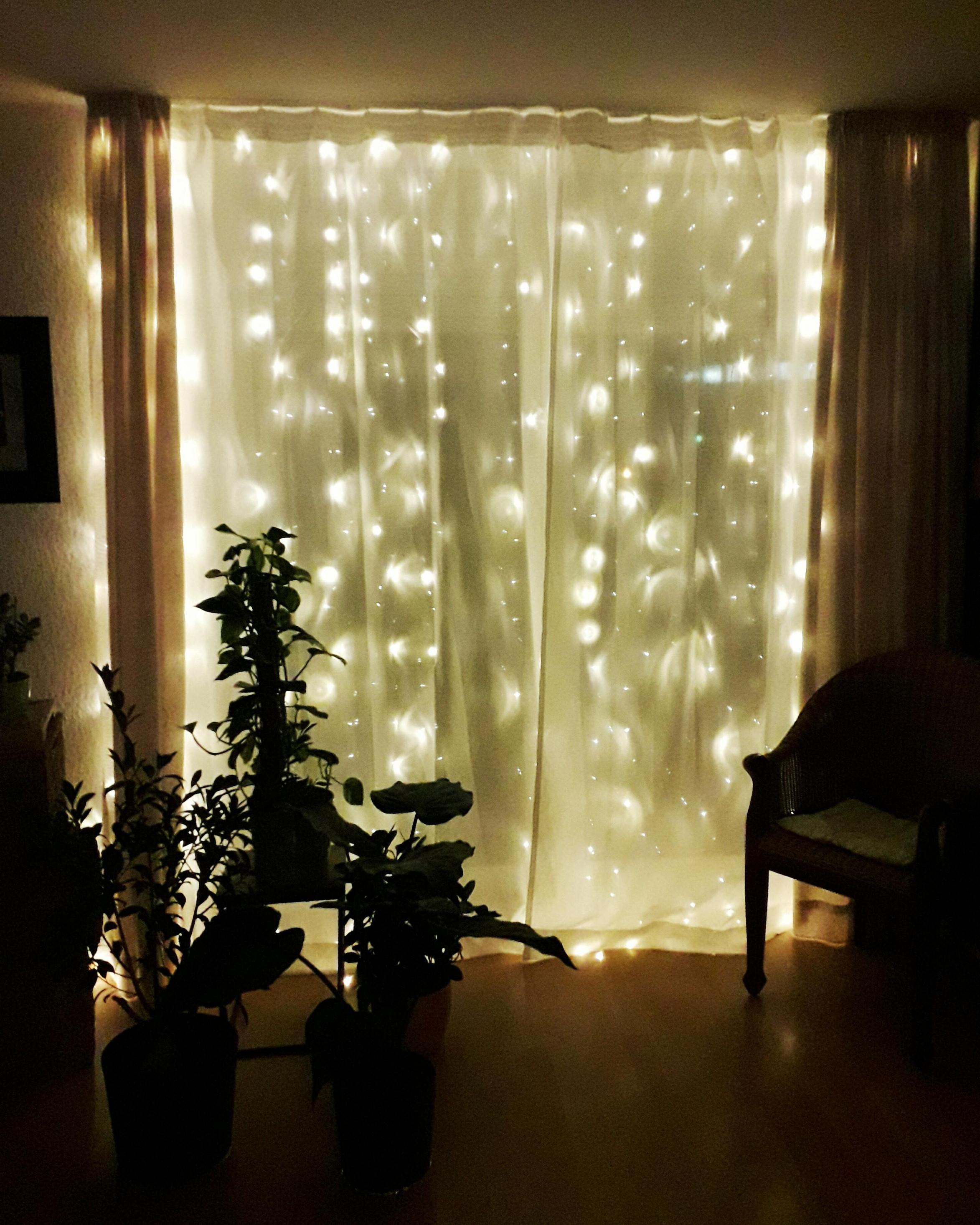Lichterkette Wohnzimmer Pflanzen • Couch von Lichterkette Ideen Wohnzimmer Bild