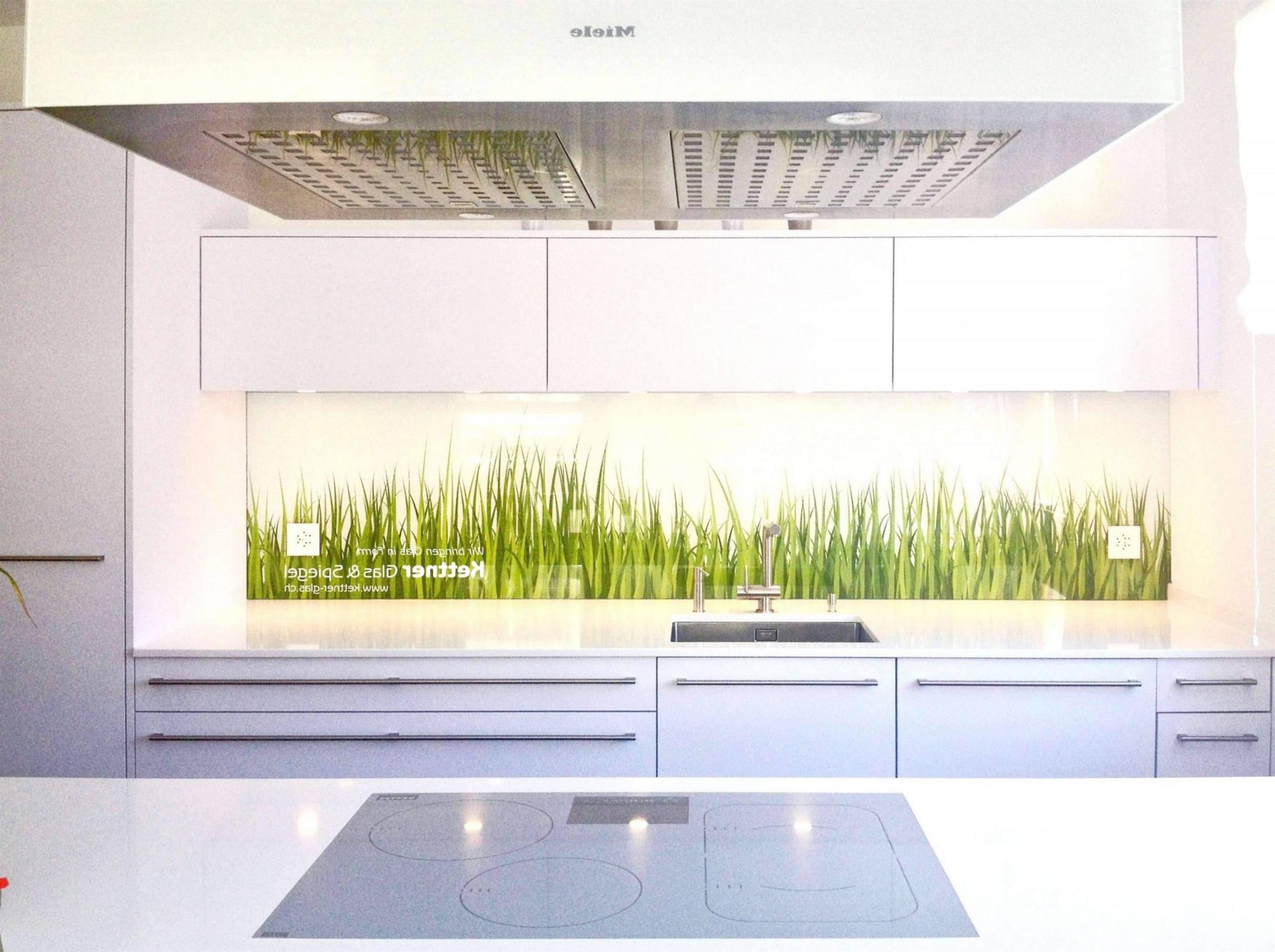 Pflanze Wohnzimmer Inspirierend Pflanzen Wohnzimmer Ideen von Pflanzen Im Wohnzimmer Ideen Bild